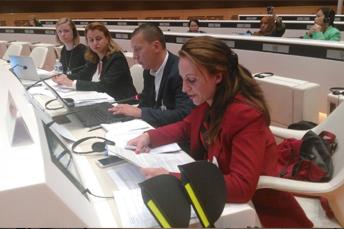 Фотографија од 20 - та сесија на ООН Комитетот за правата на лицата со хендикеп